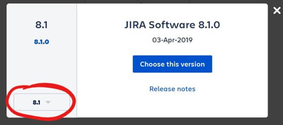 select JIRA version